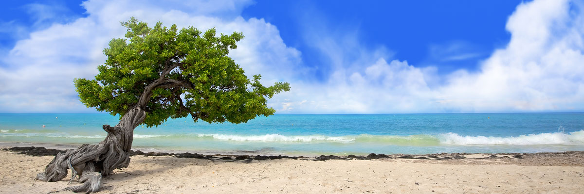 Best Caribbean Beaches For You Visit